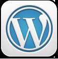 WordPress v3 Icon