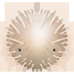 Blowfish Icon 256x256 png