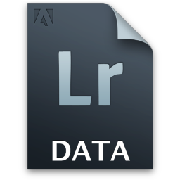 Adobe Lightroom Gray Icon 256x256 png