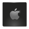 Apple Icon 96x96 png