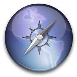 Safari Lion Icon 256x256 png