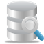 Search Database Icon 64x64 png