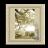 Silk Cotton Icon