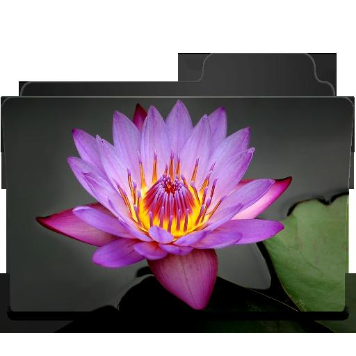 Searose Icon 512x512 png