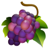 Grapes Icon 96x96 png