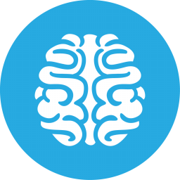 Brain Games Icon 256x256 png