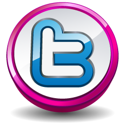 Twitter Pink Button Icon 256x256 png