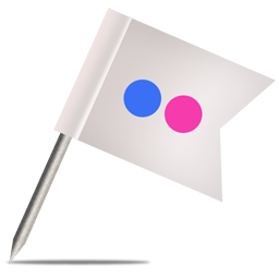 Flickr 1 Icon 256x256 png