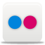 Flickr 1 Icon 64x64 png
