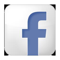 Social Facebook Box White Icon 256x256 png