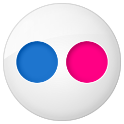Social Flickr Button Icon 256x256 png