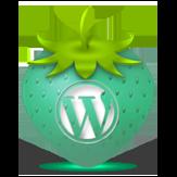 WordPress Icon 163x163 png