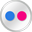 Flickr White Icon 32x32 png
