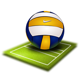Volleyball Icon 256x256 png