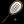 Squash Icon 24x24 png