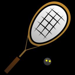 Squash Icon 256x256 png