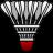 Badminton Icon 48x48 png
