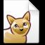 Mimetypes Metafont Icon 64x64 png