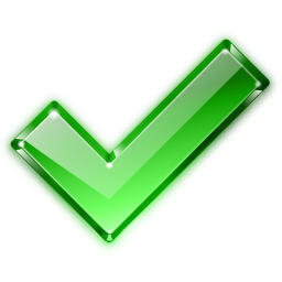 Actions Button Ok Icon 256x256 png