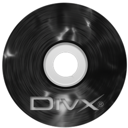 Plastic CD Divx Icon 256x256 png