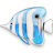 Apps Bluefish Icon