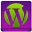 Pink WordPress Coloured Icon 64x64 png