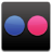 Apps Flickr Icon 48x48 png