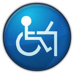 Access Icon 256x256 png