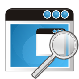 Application Search Icon 256x256 png