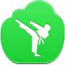 Karate Icon 96x96 png